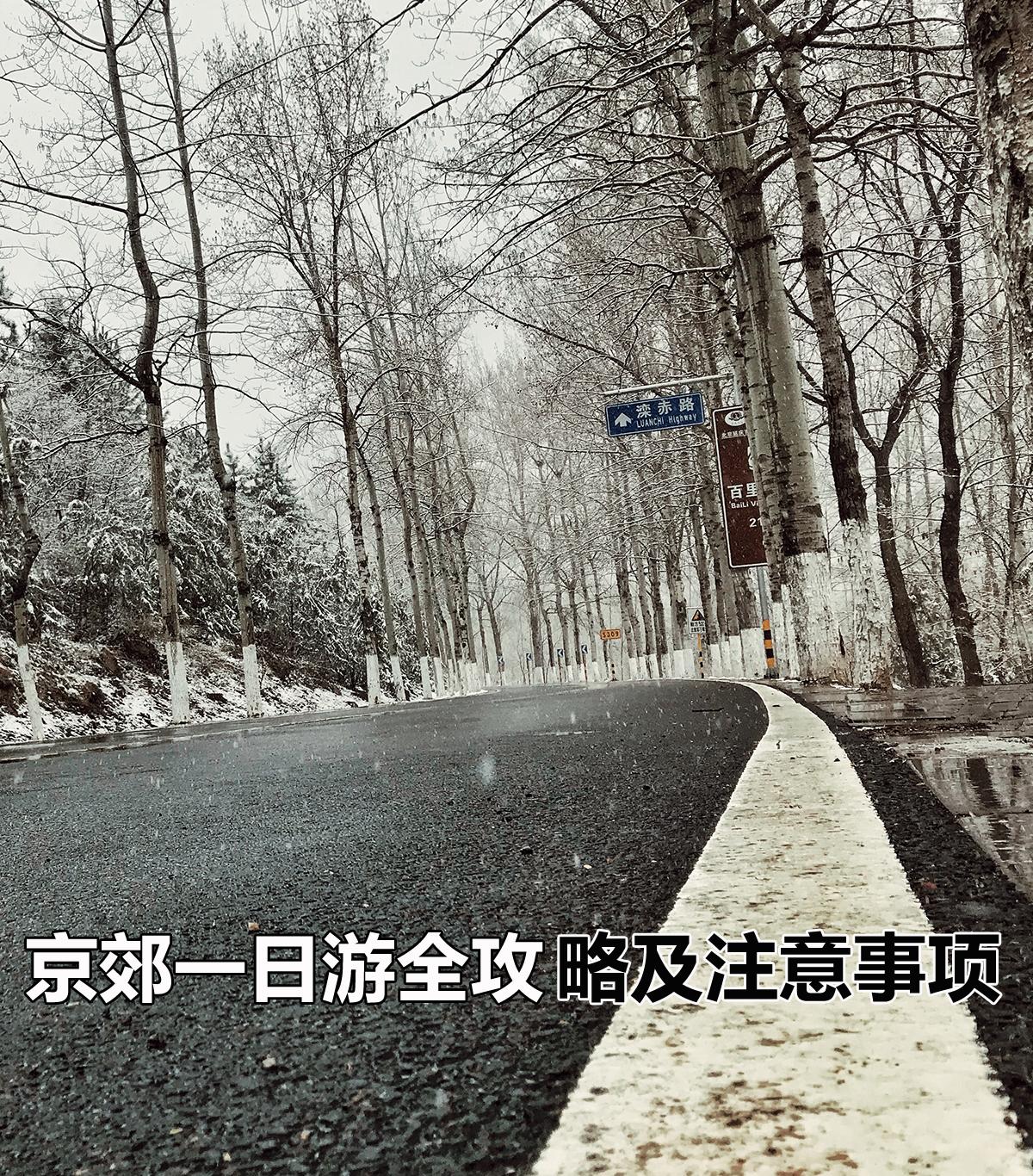 赏花+烧烤? 清明节京郊一日游全攻略及小贴士