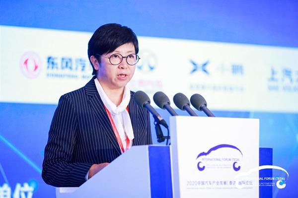财政部宋秋玲:新能源汽车单靠补贴打造不了国际知名民族品牌